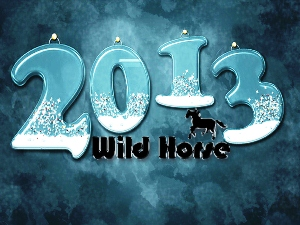 wildhorse2013s300x225.jpg