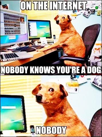 dogsoninternet