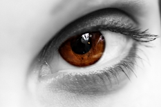 BW-brown-Eye