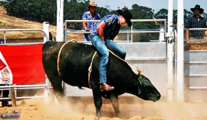 This is no mechanical bull