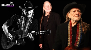 Willie Nelson started it all now the show is free for all