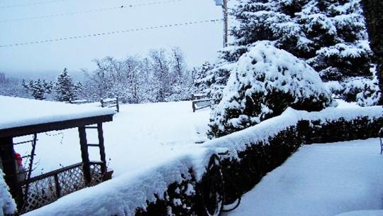 Nashville Snow01a