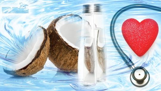 CoconutPromoMaritz001