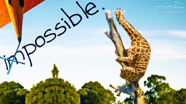 ImpossibleGoals