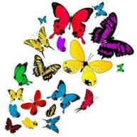 butterfliess