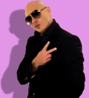 Pitbull Pop Superstar