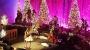 Kacey Musgraves Brings Christmas Spirit toRyman